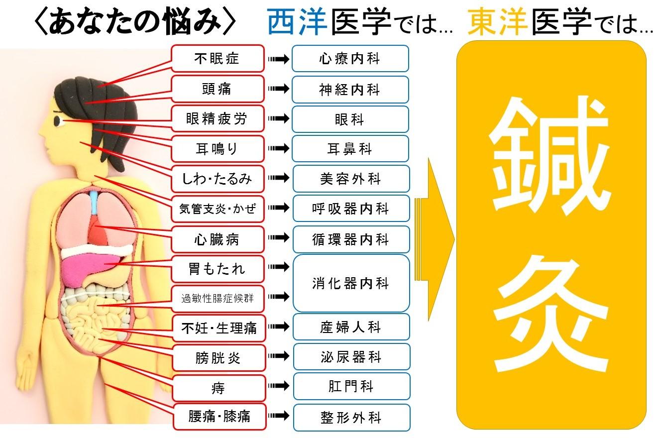 広島県呉市の鍼灸院・整体院【悠心堂】の鍼灸の適応
