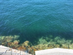 音戸の海、出張治療
